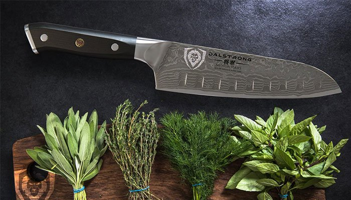 dalstrong santoku blade structure